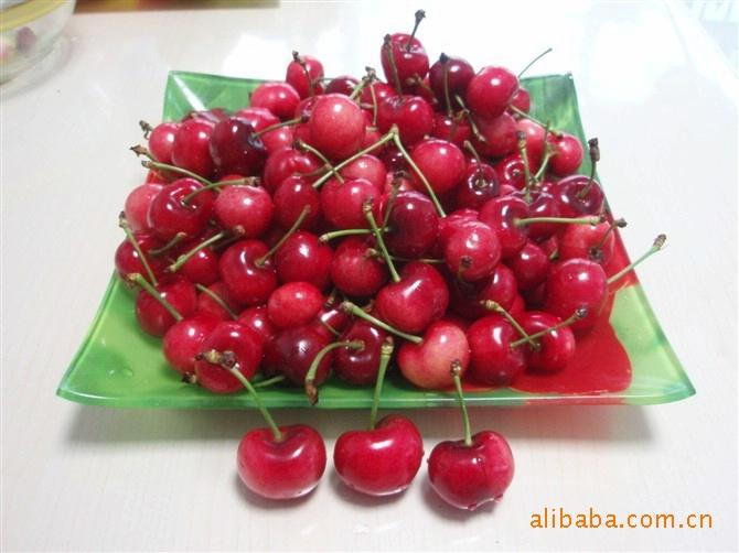常年供应红富士苹果,大樱桃,是馈赠亲友,企业福利的理想果品