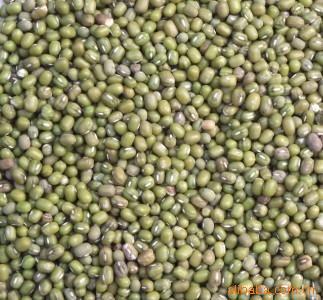 供应明绿豆