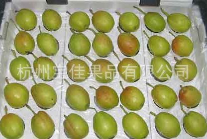 供应库尔勒香梨 一级 优质果品 品质保证(品质生活,宝佳相伴)
