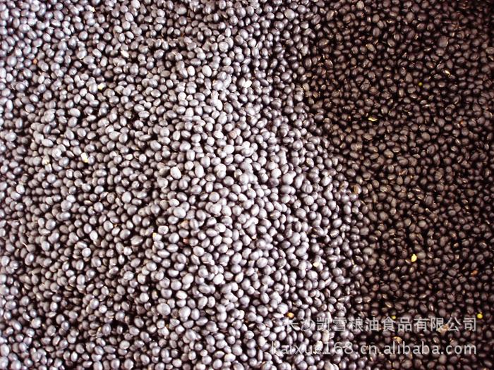 供应厂家直销凯雪五谷杂粮系列黑豆