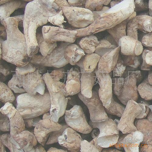 小菇脚,小双剪菇脚,小香菇腿, 香菇脚
