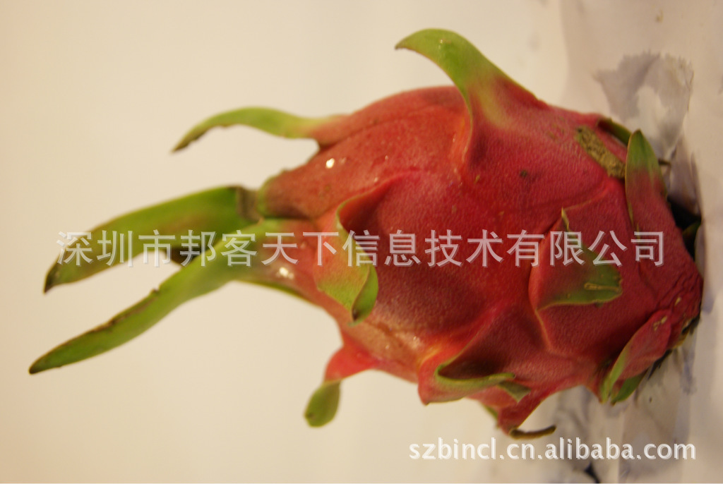 进口水果批发 越南火龙果 深圳水果配送 生鲜果品 20斤装
