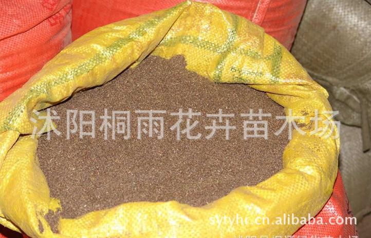 低价供应;多花木兰种子 等各种花卉苗木、草坪种子