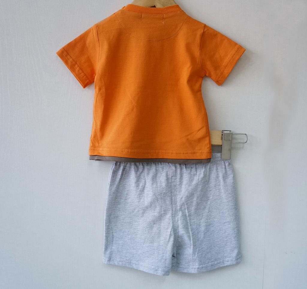 2013夏装婴幼儿新款 纯棉套装 男童短袖 短裤 宝宝套装批发采