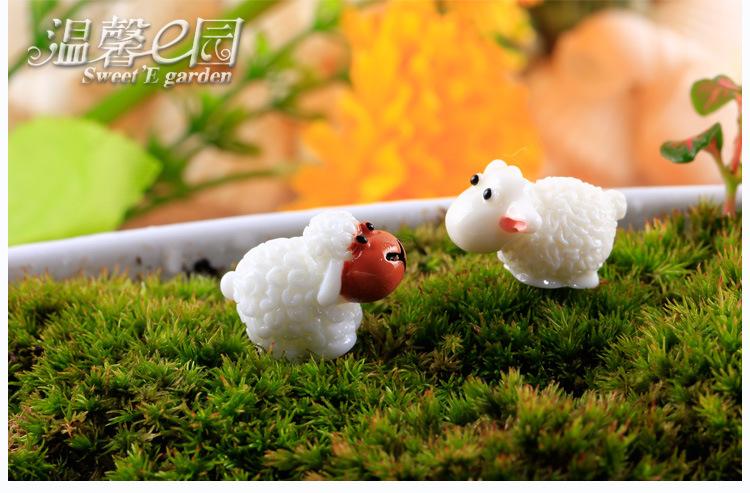 Tiểu cảnh con cừu