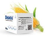 玉米内源基因核酸检测试剂盒(恒温荧光法)