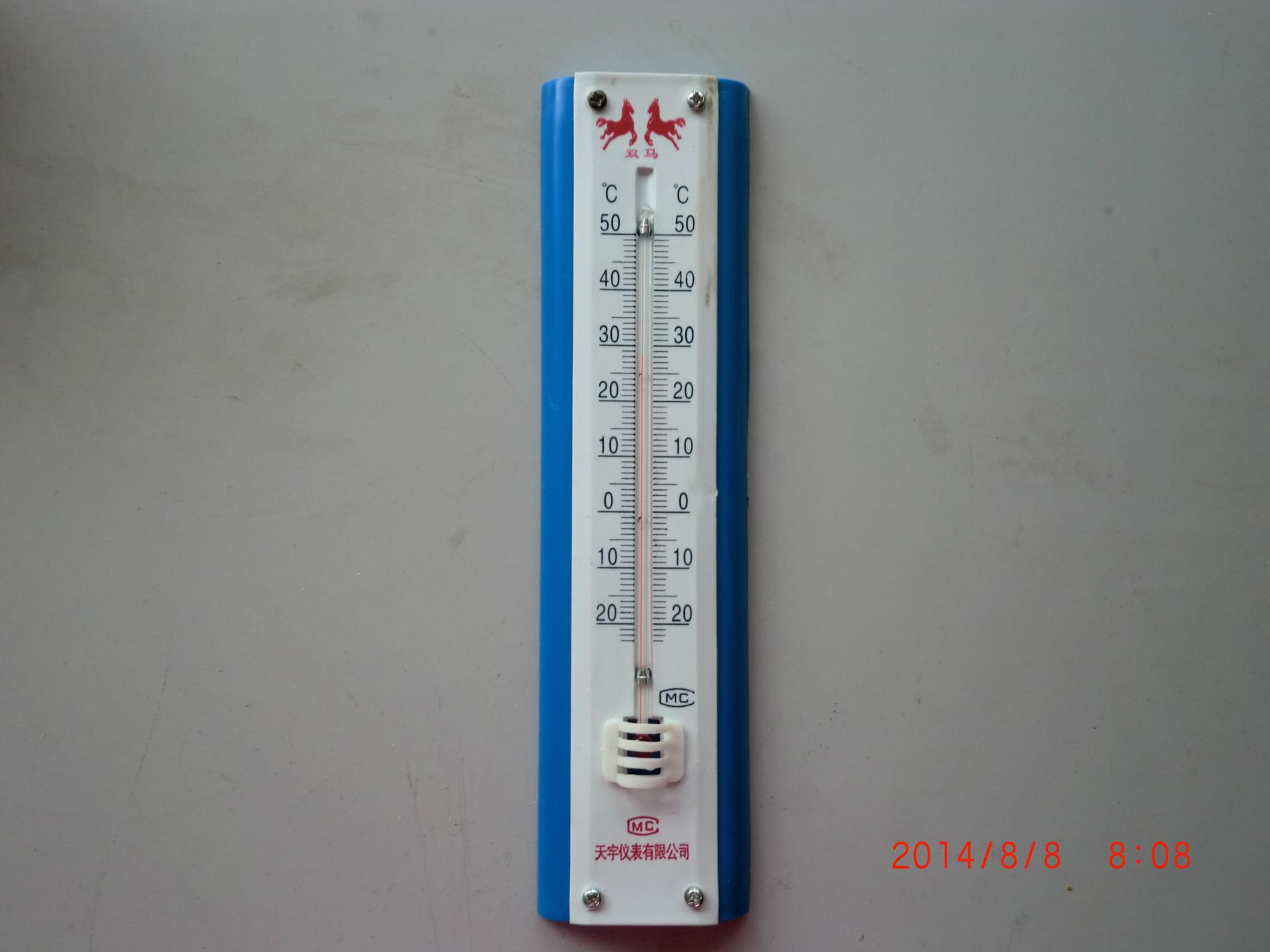 199型工艺寒暑表 长条温湿计