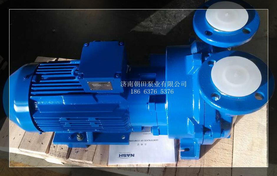 真空泵2bv5161-0z-s佶缔纳士真空泵
