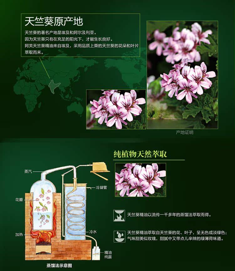 DK Aromatherapy 萃取天竺葵单方精油 保温补水 美白精油 护肤品