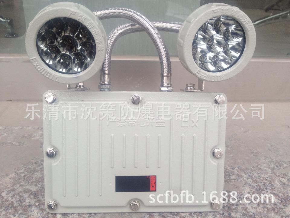 新黎明防爆BaJ52防爆双头应急灯 防爆应急灯 质量保证