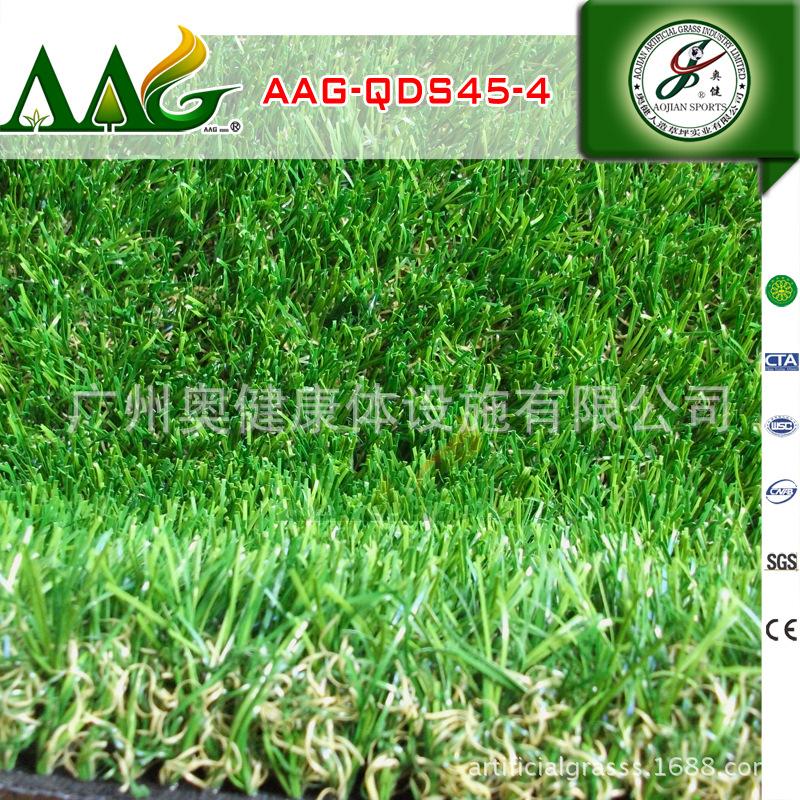 AAG-QDS45-4 (1)