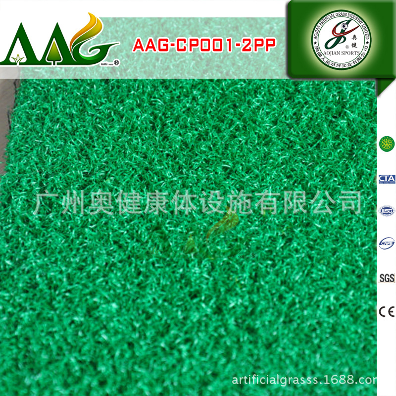 AAG-CP001-2PP (3)