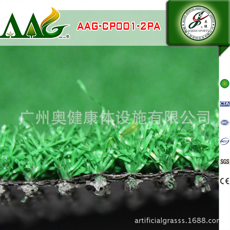 AAG-CP001-2PA (14)